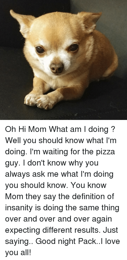 Memes, Moms, and Pizza: Oh Hi Mom  What am I doing ? Well you should know what I'm doing. I'm waiting for the pizza guy. I don't know why you always ask me what I'm doing you should know. You know Mom they say the definition of insanity is doing the same thing over and over and over again expecting different results. Just saying..  Good night Pack..I love you all!