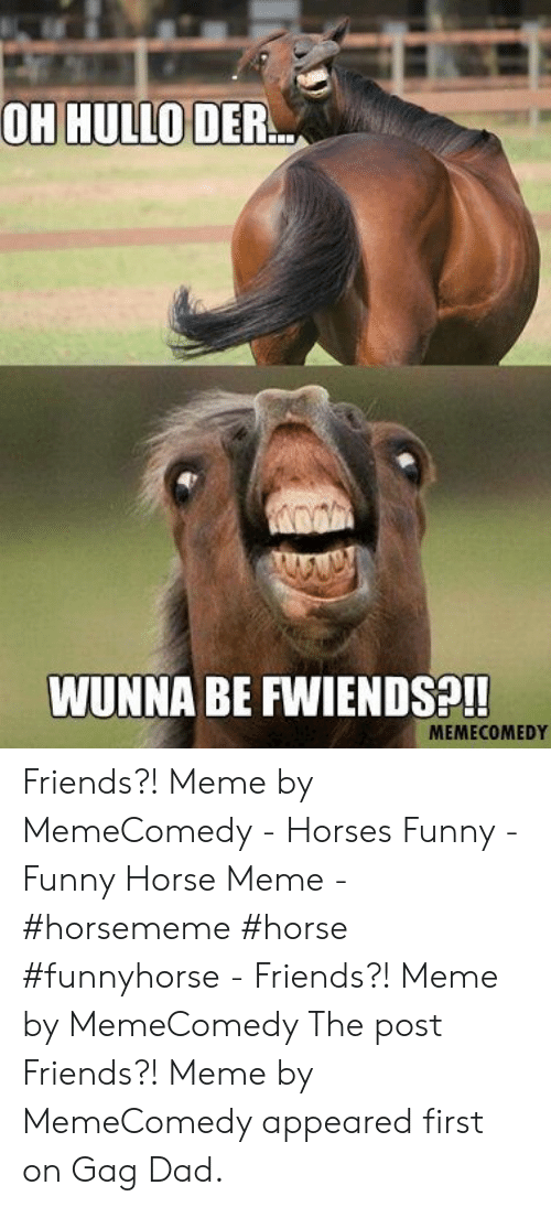 Horse Meme: OH HULLO DER  WUNNA BE FWIENDS?!!  MEMECOMEDY Friends?! Meme by MemeComedy - Horses Funny - Funny Horse Meme - #horsememe #horse #funnyhorse -   Friends?! Meme by MemeComedy  The post Friends?! Meme by MemeComedy appeared first on Gag Dad.