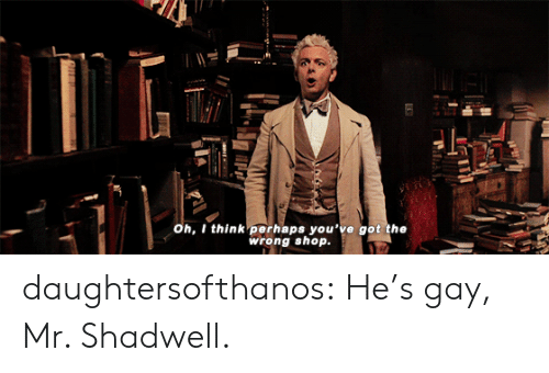 Hes Gay: oh, I think perhaps you've got the  wrong shop. daughtersofthanos: He's gay, Mr. Shadwell.