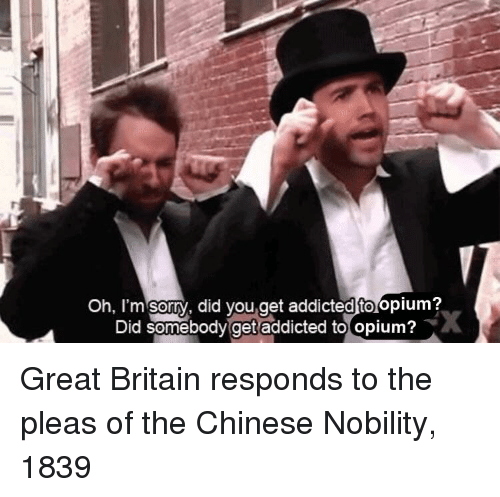 oh-im-sorry: Oh, I'm sorry, did you,get addicted to opium?  Did somebody get addicted to opium? Great Britain responds to the pleas of the Chinese Nobility, 1839