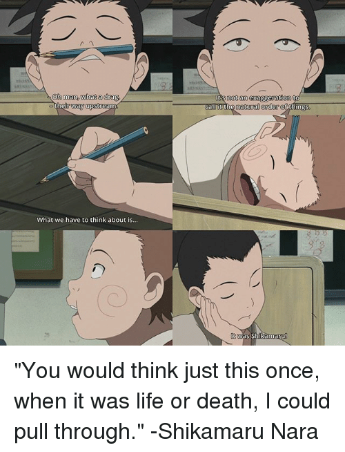 """shikamaru nara: Oh man What a drag  thi  r way upstreamO  What we have to think about is...  Its not an exaggeration to  t the natural order  ofAthings  t was Shikamaru """"You would think just this once, when it was life or death, I could pull through."""" -Shikamaru Nara"""