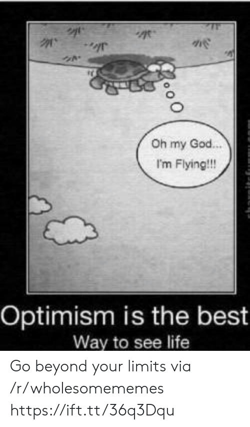 Optimism: Oh my God.  I'm Flying!!!  Optimism is the best  Way to see life Go beyond your limits via /r/wholesomememes https://ift.tt/36q3Dqu