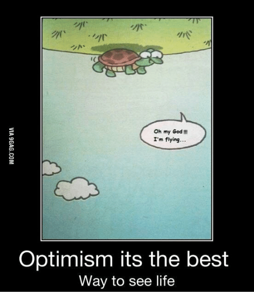oh my god im flying optimism its the best way 14024009 just bought a slow cooker slow cooker meme on me me