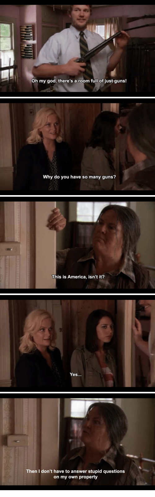 America, God, and Guns: Oh my god, there's a room full of just guns!   Why do you have so many guns?   This is America, isn't it?   Yes..   Then I don't have to answer stupid questions  on my own property
