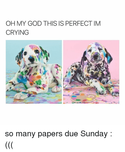 Girl Memes: OH MY GOD THIS IS PERFECT IM  CRYING so many papers due Sunday :(((