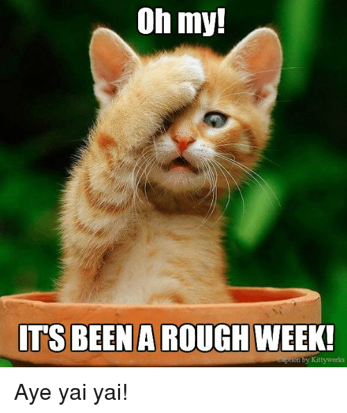 Rough Week: Oh my!  ITS BEEN A ROUGH  WEEK!  on by Kittyworks Aye yai yai!