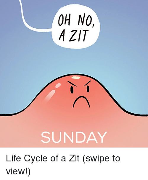 Life, Memes, and Sunday: OH NO,  A ZT  SUNDAY Life Cycle of a Zit (swipe to view!)