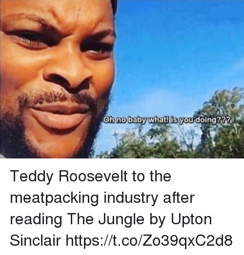 upton: Oh no baby what! is you doing?3? Teddy Roosevelt to the meatpacking industry after reading The Jungle by Upton Sinclair https://t.co/Zo39qxC2d8
