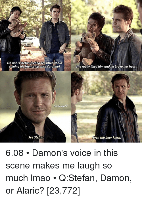 Lmao, Memes, and Bear: Oh no! Is Stefanfeelingsensitive about  ruining his friendship with Caroline?  See Stefan.  She really liked him and he broke her heart.  Even the bear knew. 6.08 • Damon's voice in this scene makes me laugh so much lmao • Q:Stefan, Damon, or Alaric? [23,772]