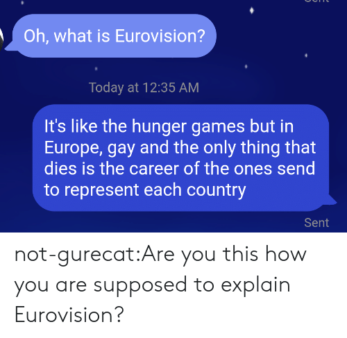 The Hunger Games: Oh, what is Eurovision?  Today at 12:35 AM  It's like the hunger games but in  Europe, gay and the only thing that  dies is the career of the ones send  to represent each country  Sent not-gurecat:Are you this how you are supposed to explain Eurovision?