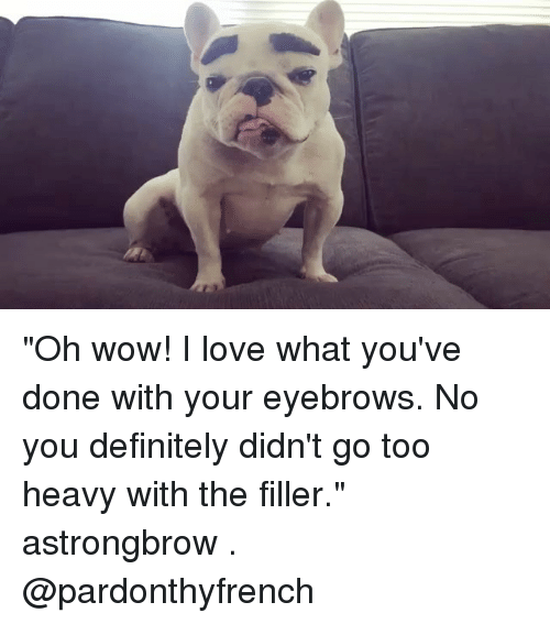 """Definitely, Love, and Memes: """"Oh wow! I love what you've done with your eyebrows. No you definitely didn't go too heavy with the filler."""" astrongbrow . @pardonthyfrench"""