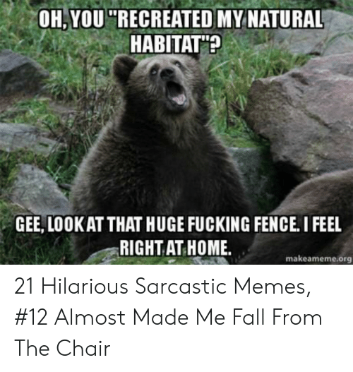 """Hilarious Sarcastic: OH,YOU """"RECREATED MY NATURAL  HABITAT?  GEE, LOOKAT THAT HUGE FUCKING FENCE. I FEEL  RIGHT AT HOME  makeameme.org 21 Hilarious Sarcastic Memes, #12 Almost Made Me Fall From The Chair"""