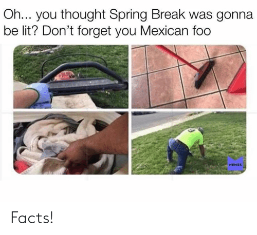Spring Break: Oh... you thought Spring Break was gonna  be lit? Don't forget you Mexican foo  MEMES Facts!