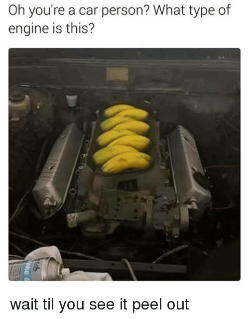 Dank Memes, Personal, and Car: Oh you're a car person? What type of  engine is this? wait til you see it peel out