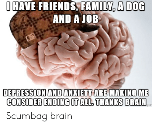 Depression And Anxiety: OHAVE FRIENDS, FAMILY, A DOG  AND A JOB  DEPRESSION AND ANXIETY ARE MAKING  CONSIDER ENDING IT ALL. THANKS BRAIN Scumbag brain