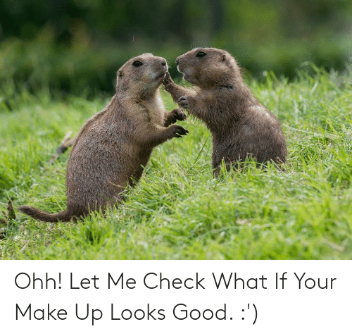 Looks Good: Ohh! Let Me Check What If Your Make Up Looks Good. :')