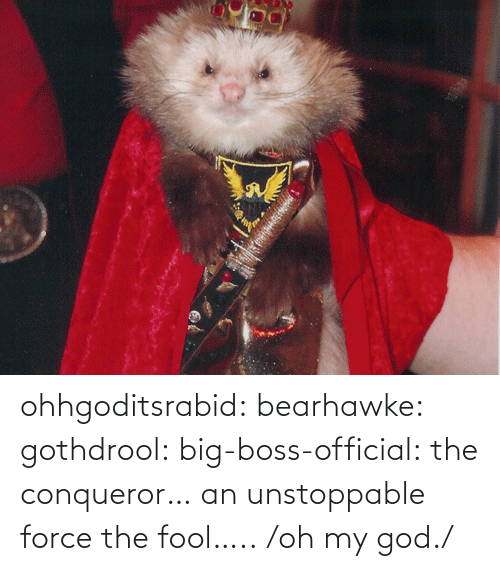 killer: ohhgoditsrabid: bearhawke:  gothdrool:  big-boss-official:  the conqueror… an unstoppable force   the fool…..                           /oh my god./