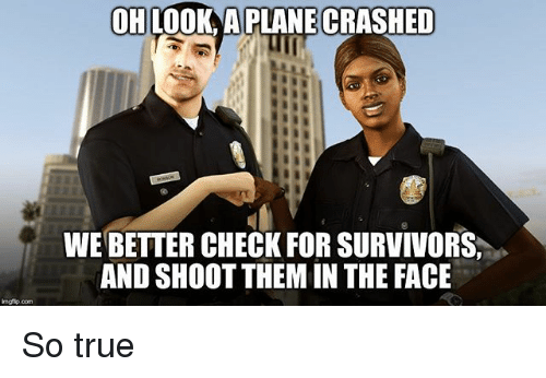 Memes, True, and 🤖: OHLOOK A PLANECRASHED  WE BETTER CHECK FOR SURVIVORS  AND SHOOT THEM IN THE FACE  imgfip com So true