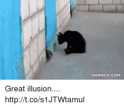 Ohmagif: OHMAGIF.COM Great illusion.... http://t.co/s1JTWtamul
