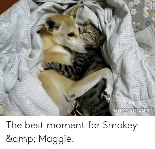 Ohmagif: OHMAGIF.COM The best moment for Smokey & Maggie.