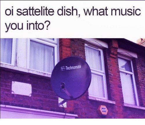 Music, Dish, and You: oi sattelite dish, what music  you into?  Technomate