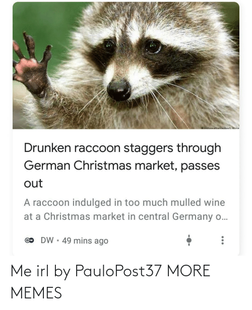 Wine: oictureNnwidoa/ Klime  Drunken raccoon staggers through  German Christmas market, passes  out  A raccoon indulged in too much mulled wine  at a Christmas market in central Germany o...  DW • 49 mins ago  Ow Me irl by PauloPost37 MORE MEMES