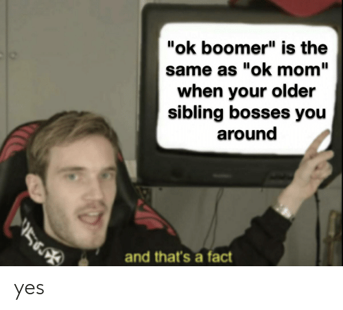 """Older Sibling: """"ok boomer"""" is the  same as """"ok mom""""  when your older  sibling bosses you  around  and that's a fact yes"""