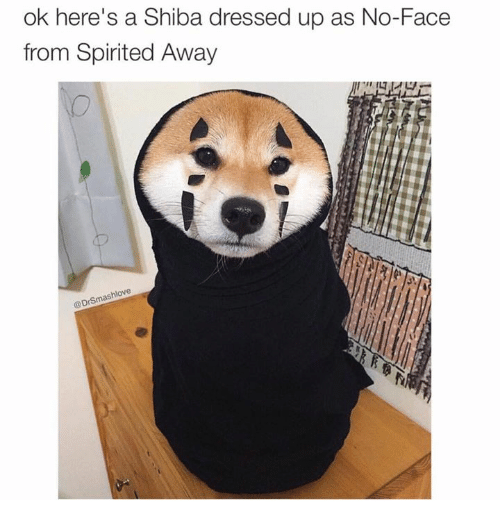 Ok Here's a Shiba Dressed Up as No-Face From Spirited Away ...