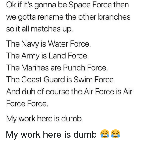 Space Force: Ok if it's gonna be Space Force then  we gotta rename the other branches  so it all matches up.  The Navy is Water Force.  T he Army is Land Force  The Marines are Punch Force.  The Coast Guard is Swim Force  And duh of course the Air Force is Air  Force Force.  My work here is dumb My work here is dumb 😂😂