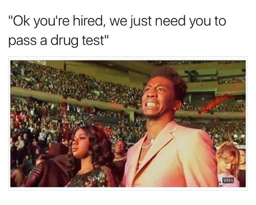 "Drugs, Weed, and Marijuana: ""Ok you're hired, we just need you to  pass a drug test"""