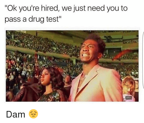 "Drugs, Funny, and Drug Test: ""Ok you're hired, we just need you to  pass a drug test"" Dam 😔"