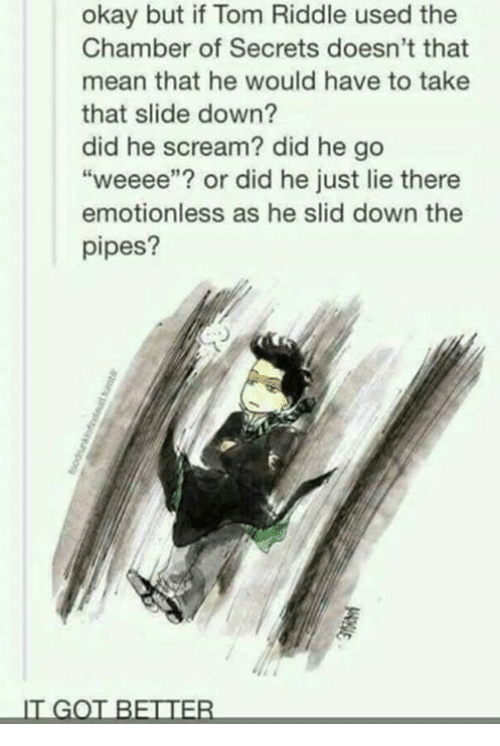 "tom riddle: okay but if Tom Riddle used the  Chamber of Secrets doesn't that  mean that he would have to take  that slide down?  did he scream? did he go  ""weeee""? or did he just lie there  emotionless as he slid down the  pipes?  IT GOT BETTER"