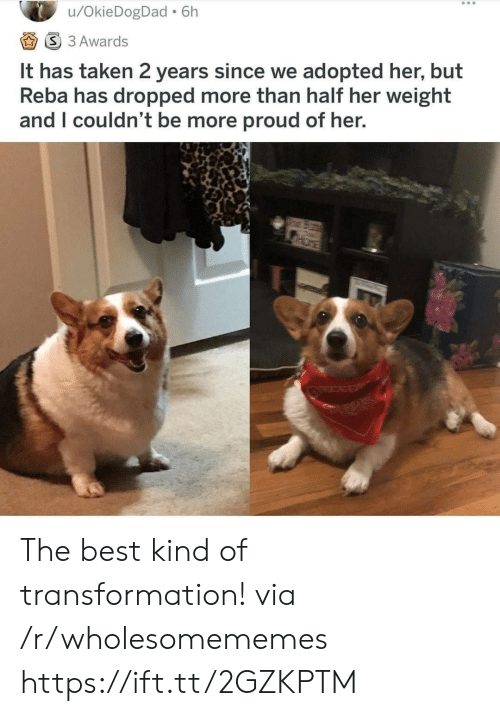 transformation: /OkieDogDad 6h  S 3 Awards  It has taken 2 years since we adopted her, but  Reba has dropped more than half her weight  and I couldn't be more proud of her.  CER The best kind of transformation! via /r/wholesomememes https://ift.tt/2GZKPTM