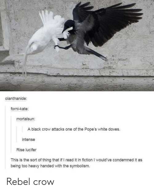 symbolism: olanthanide:  forni-kate:  mortalsun:  A black crow attacks one of the Pope's white doves.  intense  Rise lucifer  This is the sort of thing that if I read it in fiction I would've condemned it as  being too heavy handed with the symbolism. Rebel crow