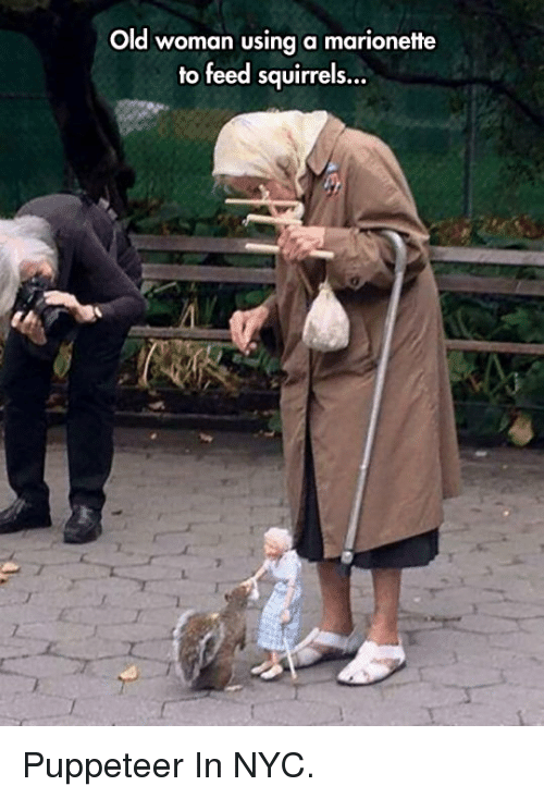 puppeteer: Old woman using a marionette  to feed squirrels... <p>Puppeteer In NYC.</p>