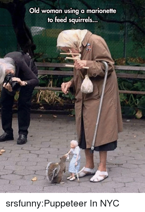 puppeteer: Old woman using a marionette  to feed squirrels... srsfunny:Puppeteer In NYC