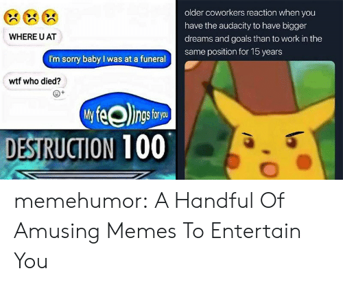 Coworkers: older coworkers reaction when you  have the audacity to have bigger  WHERE U AT  dreams and goals than to work in the  same position for 15 years  I'm sorry baby I was at a funeral  wtf who died?  DESTRUCTION 100 memehumor:  A Handful Of Amusing Memes To Entertain You