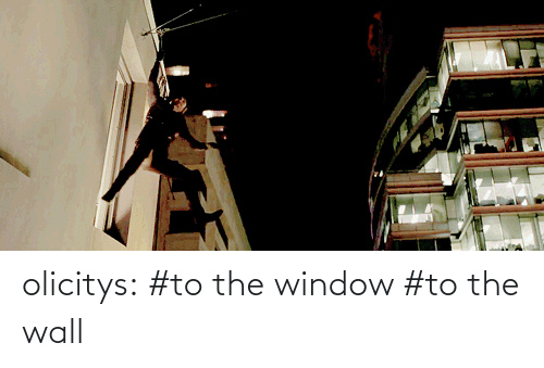 window to the wall: olicitys:  #to the window #to the wall