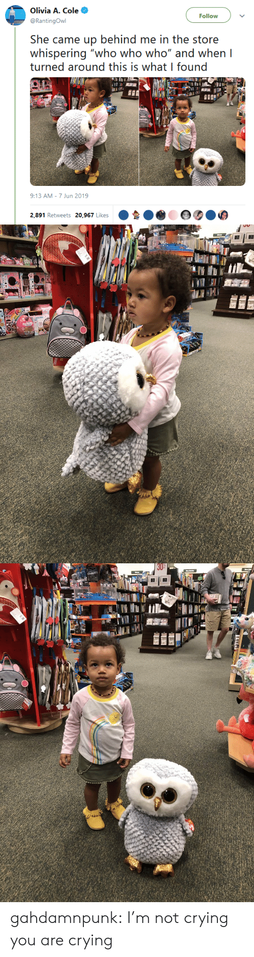 """Whispering: Olivia A. Cole  Follow  @RantingOwl  She came up behind me in the store  whispering """"who who who"""" and when I  turned around this is what I found  9:13 AM 7 Jun 2019  2,891 Retweets 20,967 Likes gahdamnpunk: I'm not crying you are crying"""