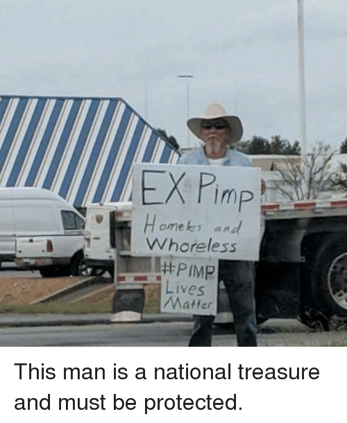 Memes, Pimp, and 🤖: omeks and  Whoreless  PIMP  Lives  Matter This man is a national treasure and must be protected.