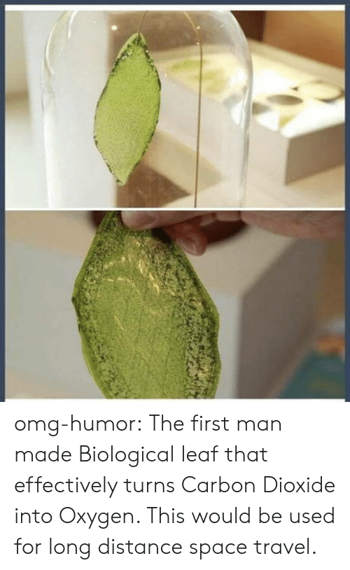 carbon dioxide: omg-humor:  The first man made Biological leaf that effectively turns Carbon Dioxide into Oxygen. This would be used for long distance space travel.