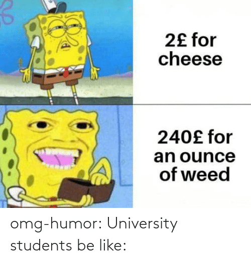 Be like: omg-humor:  University students be like: