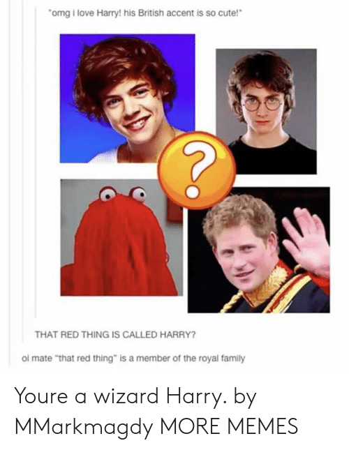 """Wizard Harry: omg i love Harry! his British accent is so cute!  THAT RED THING IS CALLED HARRY?  ol mate """"that red thing"""" is a member of the royal family Youre a wizard Harry. by MMarkmagdy MORE MEMES"""