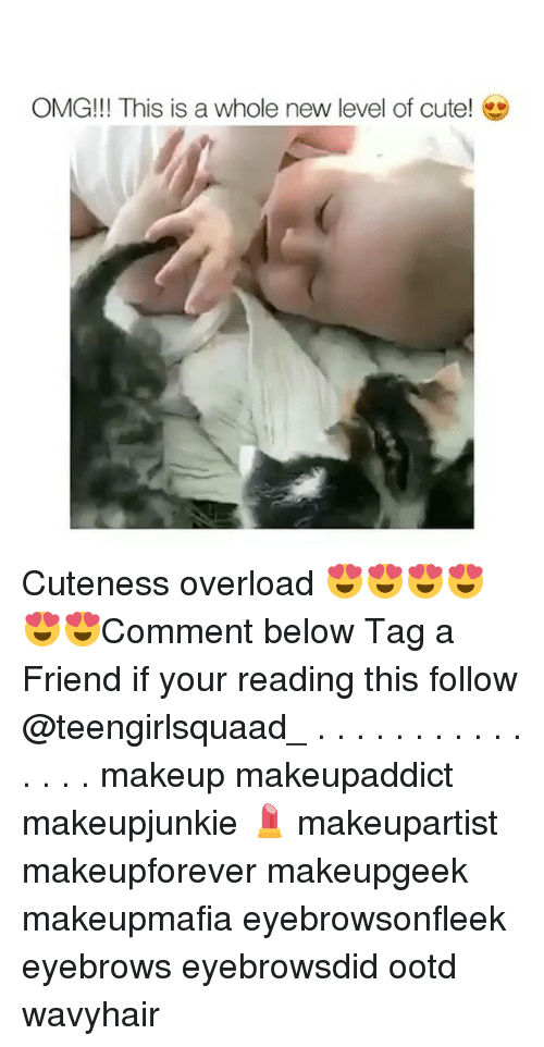 Cute, Makeup, and Memes: OMG!!! This is a whole new level of cute! Cuteness overload 😍😍😍😍😍😍Comment below Tag a Friend if your reading this follow @teengirlsquaad_ . . . . . . . . . . . . . . . makeup makeupaddict makeupjunkie 💄 makeupartist makeupforever makeupgeek makeupmafia eyebrowsonfleek eyebrows eyebrowsdid ootd wavyhair