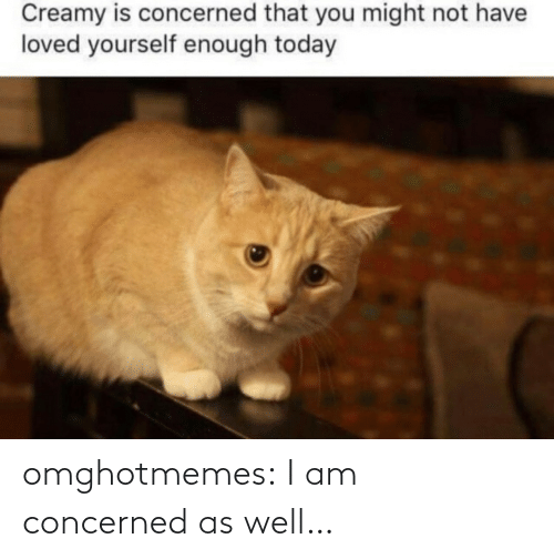 as well: omghotmemes:  I am concerned as well…