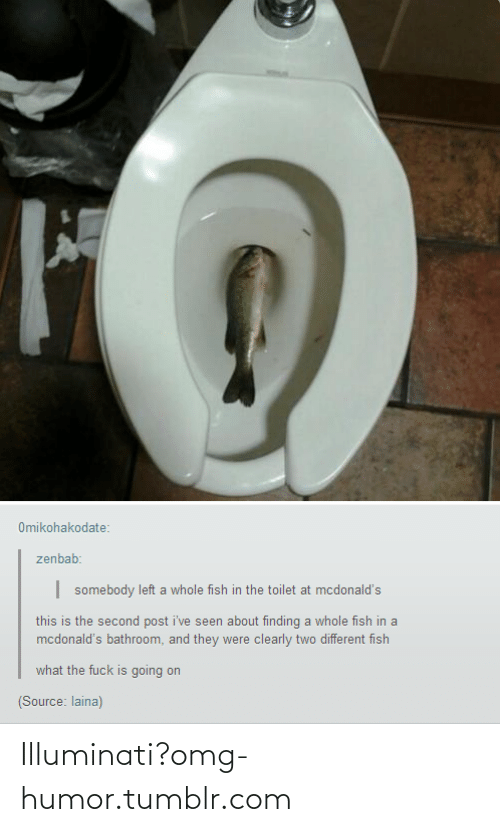 laina: Omikohakodate:  zenbab:  somebody left a whole fish in the toilet at mcdonald's  this is the second post i've seen about finding a whole fish in a  mcdonald's bathroom, and they were clearly two different fish  what the fuck is going on  (Source: laina) Illuminati?omg-humor.tumblr.com