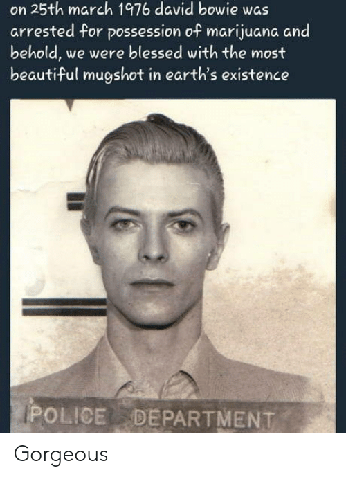 David Bowie: on 25th march 1976 david bowie was  arrested for possession of marijuana and  behold, we were blessed with the most  beautiful mugshot in earth's existence  POLICE DEPARTMENT Gorgeous