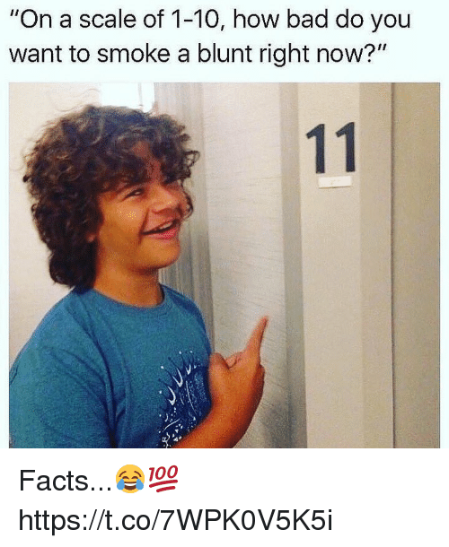 "Bad, Facts, and How: ""On a scale of 1-10, how bad do you  want to smoke a blunt right now?"" Facts...😂💯 https://t.co/7WPK0V5K5i"