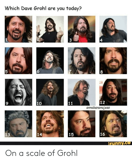 On A Scale Of: On a scale of Grohl