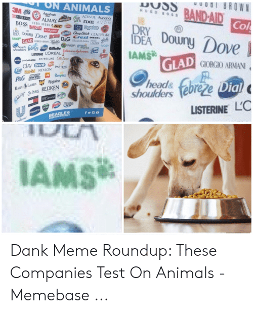 Meme Roundup: ON ANIMALS  3M  HUGO BOSS  ACUVUE Aveeno  AXE AVON  wick  Col  Ley D  AMS  ChapStick COERGIR  Crest DIESEL  e prane  D&G  ove  LISTERINE LOREALnoafehsow  D GIORGIO ARMAN  PANTENE  head&  Shoulders euree  Dial  S Nes REDKEN  LISTERINE L'C  IAMS Dank Meme Roundup: These Companies Test On Animals - Memebase ...